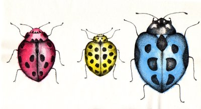 pointilist ladybird illustration in the cmyk colour model by holly holt