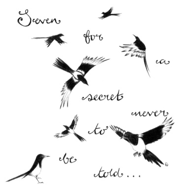 seven for a secret never to be told magpie drawing by holly holt