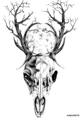 ballpoint pen stag skull drawing by holly holt