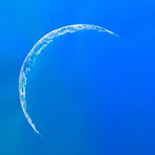 holly-holt-art-crescent-day-moon-drawing